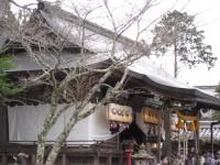 Kasuga03