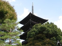 Toujikoi04